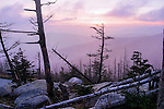 Dead Trees In Silhouette Atop Clingman's Dome At Sunset In The Great Smoky Mountains National Park, Tennessee, North Carolina, USA