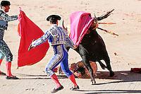 toros, plaza de toros, toreros, san fermin 2014, corrida