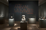Soulful Creatures: Animal Mummies in Ancient Egypt Installation Views