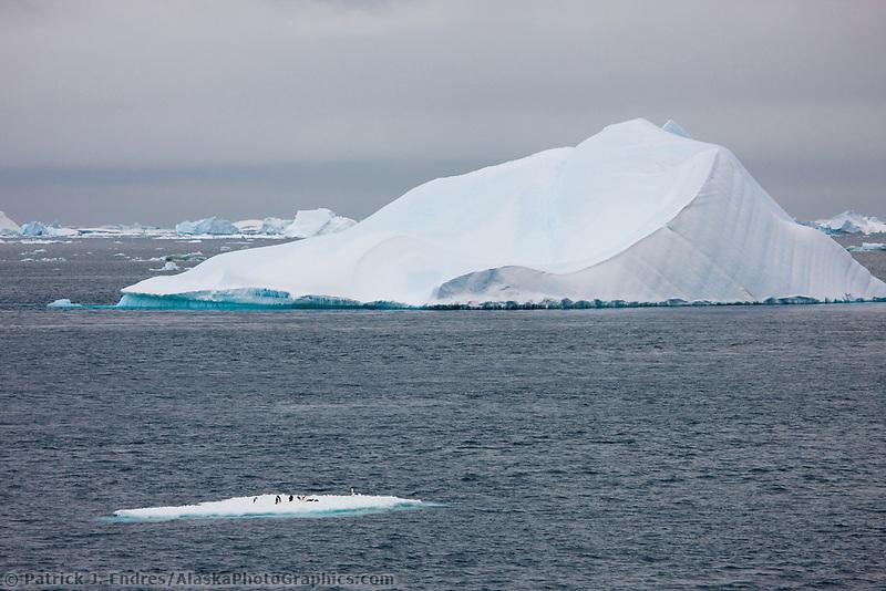 Floating icebergs near Paulet Island, Antarctic peninsula.