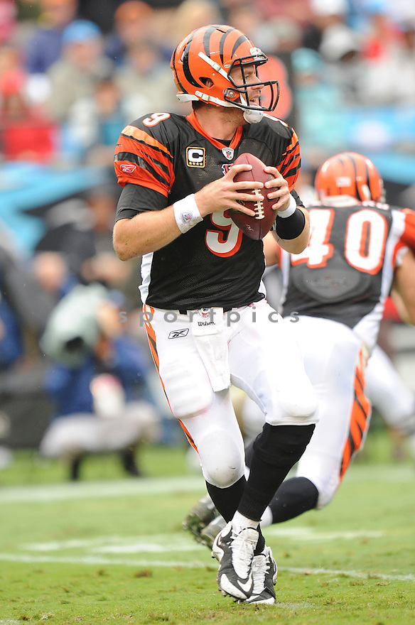 CARSON PALMER, of the Cincinnati Bengals, in action during the Bengals game against the Carolina Panthers at Bank of America Stadium on September 26, 2010  in Charlotte, NC...Cincinnati beat Carolina 20-7