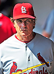 14 March 2010: St. Louis Cardinals' Manager Tony La Russa walks the dugout during a Spring Training game against the Washington Nationals at Space Coast Stadium in Viera, Florida. The Cardinals defeated the Nationals 7-3 in Grapefruit League action. Mandatory Credit: Ed Wolfstein Photo
