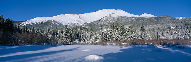 Long shadows reach snow-covered subalpine forest beneath Mt Meeker, Rocky Mtn Nat'l Park, CO