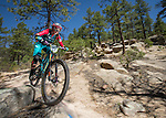 2016 Big Mountain Enduro Santa Fe