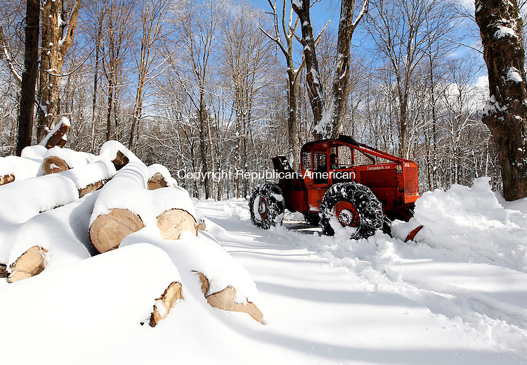 Litchfield, CT- 14 February 2014-021414CM03- Lukas Hyder, a forester with White Memorial Conservation Center clears a trailhead at the hiking trails off Rt. 63 in Litchfield on Friday.  Hyder said he was making a path for logging trucks, which were part of a selective harvest project that is going on at the conservation area.  He said the projected included thinning the woods, along with clearing any trees that could potentially affect the power lines.  Christopher Massa Republican-American