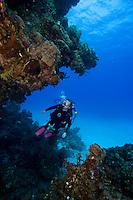 Cave Rock, Eleuthera, Bahama Islands
