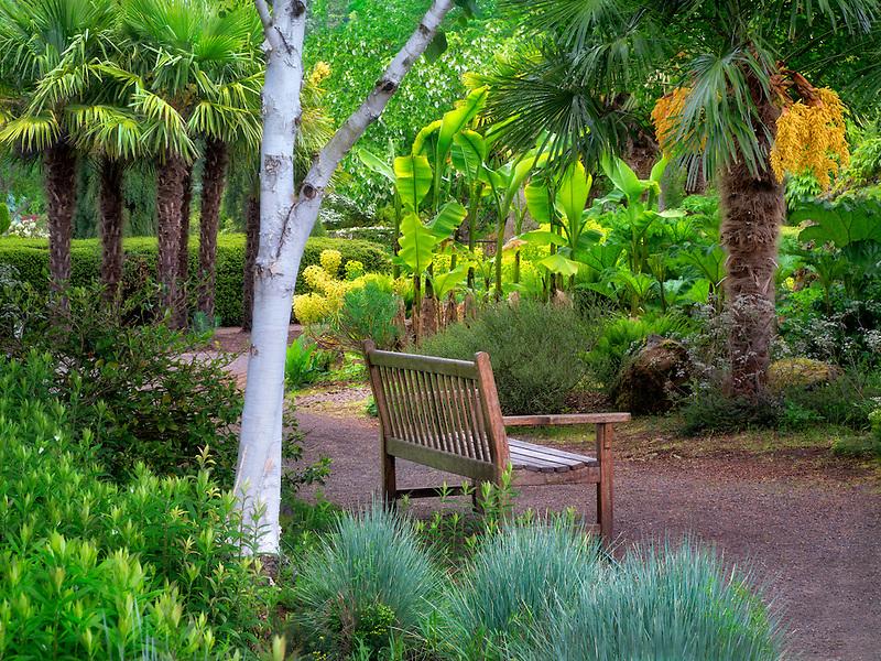 Bench in Oregon Garden. Oregon