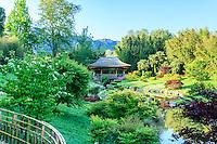 France, Gard, Générargues, LA BAMBOUSERAIE : le vallon du Dragon crée par le paysagiste Érik Borja. A une extrémité de la pièce d'eau, le pavillon du Phoenix rouge.