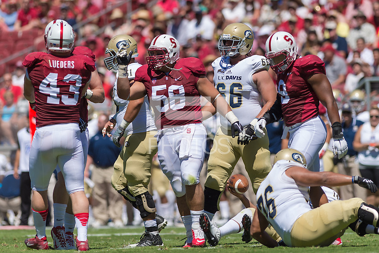 STANFORD, CA - AUGUST 30, 2014:  David Parry celebrates during Stanford's game against UC Davis. The Cardinal defeated the Aggies 45-0.