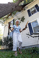 Sue Copeland cleans up debris from a large tree that fell onto her home on St. George Avenue Tuesday in Crozet, VA. High winds from Friday night's storm downed numerous trees and caused massive power outages across the area.