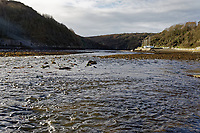 Pictured: The River Solva. Friday 10 January 2020<br /> Re: Farmers campaigning to save a 14th century farm called Trecadwgan and keep it for a community project in Solva, west Wales, UK.