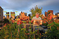David Graves, 59 year, with one of his hives right in Soho on the terrace garden of an apartment near Broadway and Grand Street. Urban apiculture is hard work for David. He gets about by subway and taxi and each operation with his hives is complicated. He has to bring the material, the supers, etc… Imagine a honey harvest on a roof you get to through a trap door…