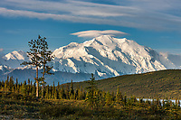 View of the north face of Denali from the west end of Denali National Park, Interior, Alaska.