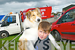 Athea Vintage Rally : Attending Athea Vintage Rally on Sunday last was Sean Sheehan, Athea & Lassie.