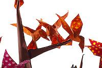 Detail of Origami model.<br /> Tree designed by John Montroll, folded by Rosalind Joyce<br /> Trogon Nishikawa's wagtail, folded by Gabriel Sherman<br /> Pajaros designed by Jose Arley Moreno Ortiz, folded by Rosalind Joyce<br /> Solenodons modified Pasquale D'Auria rat design, folded by Rosalind Joyce<br /> Grass designed and folded by Rosalind Joyce<br /> Leaves designed by Jesse Seto, folded by Rosalind Joyce