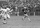 Washington Redskins running back Larry Brown (43) carries the ball against the New York Giants at RFK Stadium in Washington, DC on December 5, 1971. Involved in the pursuit are left cornerback Otto Brown (21) and right linebacker John Douglas (51).  The Redskins won the game 23 - 7.<br /> Credit: Arnie Sachs / CNP