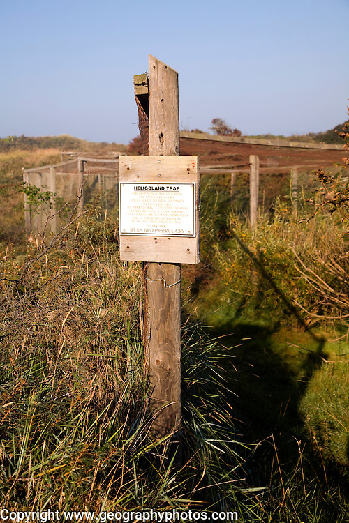 Heliogoland Trap, Spurn Head, Yorkshire, England