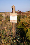 Heliogoland Trap, Spurn Head, Yorkshire, England