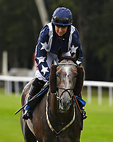 Letmestopyouthere ridden by Brodie Hampson goes down to the start of The Gift Of Sight Handicap   during Evening Racing at Salisbury Racecourse on 3rd September 2019