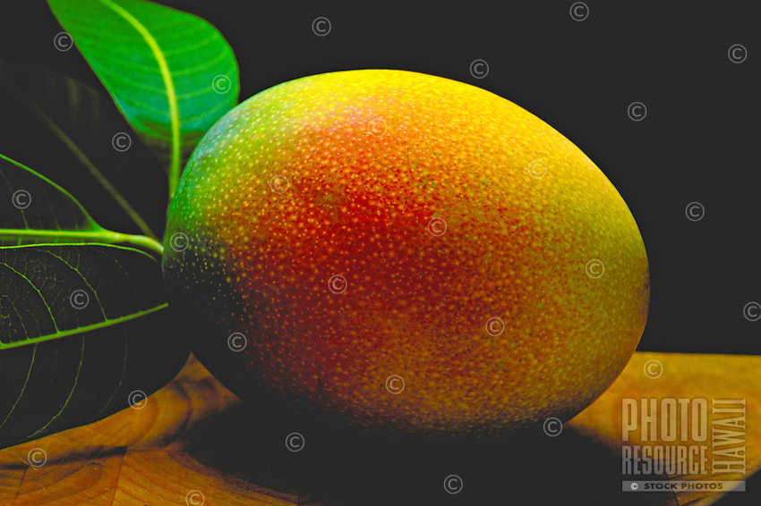 close up of a ripe mango