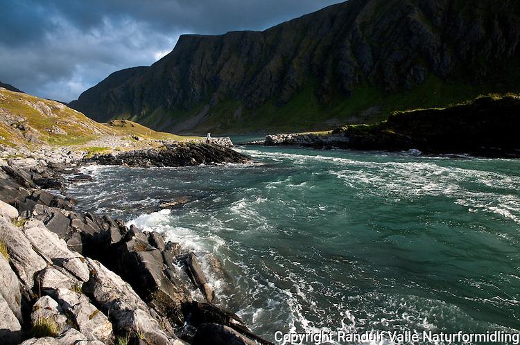 Tidevannstrømmen Veststraumen på Sørøya. ---- Tidal current on Sørøya.