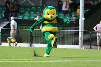 The Horsham mascot scores a goal in the half time break during Horsham vs Hartley Wintney, Friendly Match Football at Hop Oast on 13th July 2019