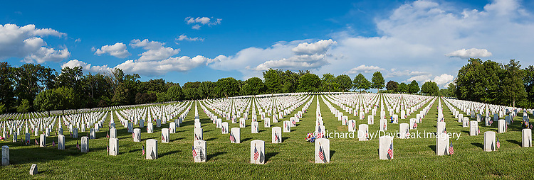 65095-02102 Flags on Memorial Day at Jefferson Barracks National Cemetery, St Louis, MO