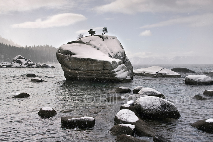 An image of fresh snow on Bonsai Rock of the east shore of Lake Tahoe.