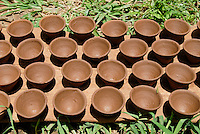 INDIA, Jharkhand, Sarwan, village Bhatkundi, potter makes one-way tea cups from clay, which are used for chai, drying cups in the sun / INDIEN Jharkand , Sarwan, Dorf Bhatkundi, Toepfer stellt Einweg Teetassen aus Ton her, trocknende Teetassen in der Sonne