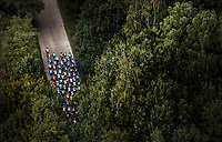 "Peloton in the forest. <br /> <br /> Antwerp Port Epic 2018 (formerly ""Schaal Sels"")<br /> One Day Race: Antwerp > Antwerp (207km of which 32km are cobbles & 30km is gravel/off-road!)"