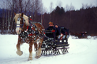 sleigh ride, Stowe, horse and sleigh, Vermont, VT, One horse open sleigh ride at Charlie Horse Sleigh Rides in Stowe in winter.
