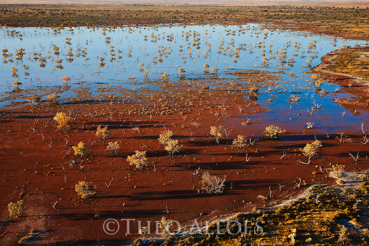 Australia, South Australia; flooded Cooper Creek in outback