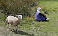 Leusden -  De Stichting Behoud Oude Werktuigen organiseert de jaarlijkse oogstdag op landgoed Den Treek. Vrouw in boeren klederdracht en een nieuwsgierig schaap
