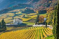 Italy, Alto Adige - Trentino (South Tyrol), Termeno sulla strada del vino: famous wine growing region, country of the Gewuerztraminer, Hotel Schneckenthaler Hof amongst vineyards   Italien, Suedtirol, suedlich von Bozen, Tramin an der Weinstrasse: beruehmte Weinbauregion, Land des Gewuerztraminers, Hotel Schneckenthaler Hof inmitten von Weinbergen