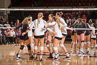 Stanford, CA -- October 28, 2016. Stanford Cardinal Women's Volleyball vs. Washington State University. Final score Stanford 3, WSU 0.