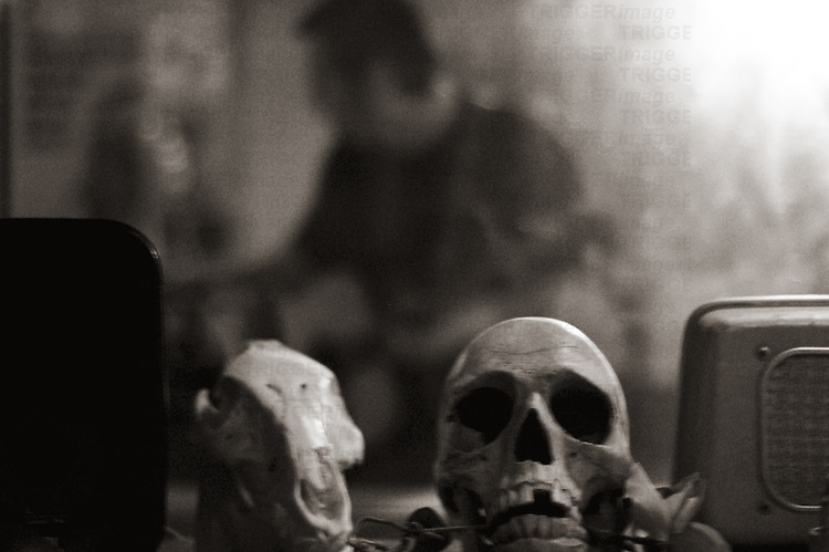 A skull with a male figure in the distance