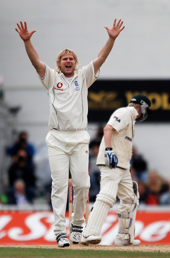 Photo: Glyn Thomas..England v Australia. nPower Test Series. The Ashes 2005..11/09/2005..England's Matthew Hoggard (L) appeals successfully for the wicket of Michael Clarke.