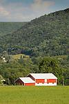 Nippenose Valley, PA. New barn. Stolzfus farm.