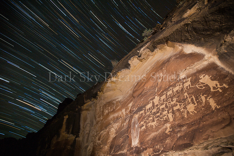 Star Trails Over the Great Hunt Panel