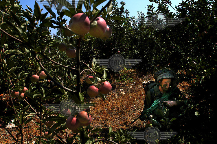 Israeli soldiers from a special unit wait in an apple grove before crossing the Israeli-Lebanese border. Israel launched attacks on Lebanon in retaliation for the capture of two of its soldiers by Hezbollah (Hizbollah) militants.