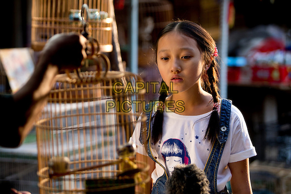 Xin Yi Yang<br /> in The Nightingale (2013)<br /> (Ye Ying - Le promeneur d'oiseau)<br /> *Filmstill - Editorial Use Only*<br /> CAP/NFS<br /> Image supplied by Capital Pictures