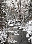 Winter creek in northern Wisconsin.