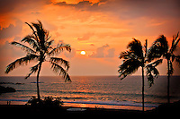 Palm trees and sunset at Hapuna Beach State Park, Kohala Coast, Big Island.