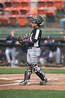 Grand Junction Rockies catcher Javier Guevara (6) during a Pioneer League game against the Helena Brewers at Kindrick Legion Field on August 19, 2018 in Helena, Montana. The Grand Junction Rockies defeated the Helena Brewers by a score of 6-1. (Zachary Lucy/Four Seam Images)