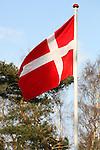 Danish Symbols