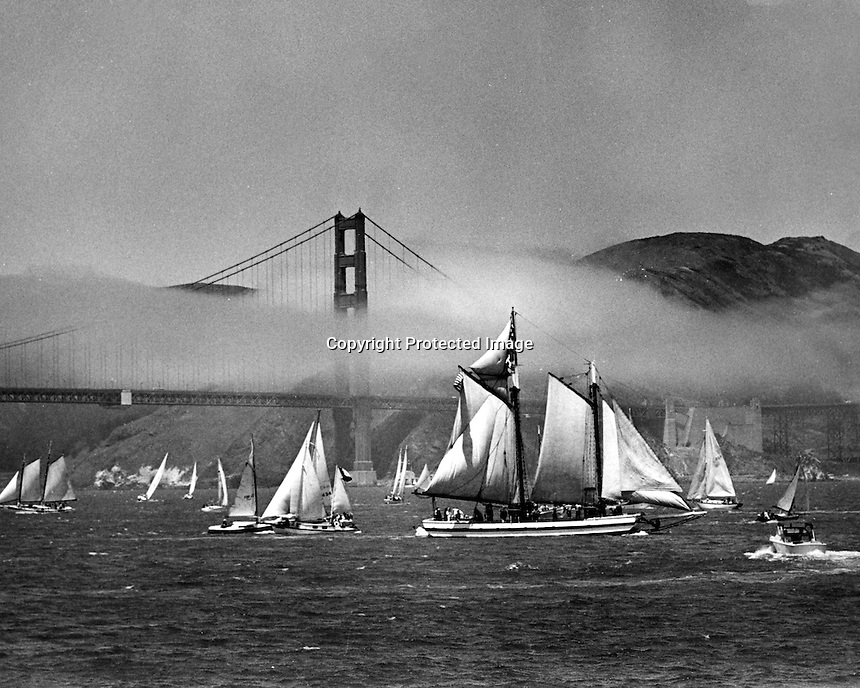 Sailboats cover the waters of San Francisco Bay in front of the Golden Gate Bridge. (photo/Ron Riesterer)