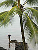 A fisherman in Hilo, on the big island of Hawaii. Photo by Kevin J. Miyazaki/Redux
