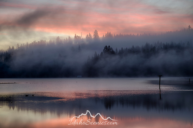 Idaho, North, Coeur d'Alene. Morning light glows pink throught the mists rising from Mica Bay of Lake Coeur d'Alene in late winter.