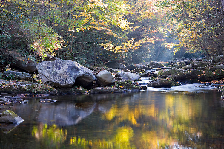 Foggy sunrise light in the fall along the Middle Prong of the Little River; Great Smoky Mountains National Park, TN