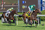 July 13, 2019 : Sistercharlie #4, ridden by John Velazquez, wins the Diana Stakes during racing at Saratoga Race Course in Saratoga Springs, New York Robert Simmons/Eclipse Sportswire/CSM